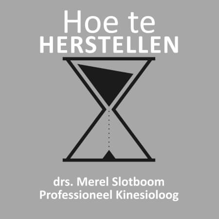 Cover Hoe te HERSTELLEN