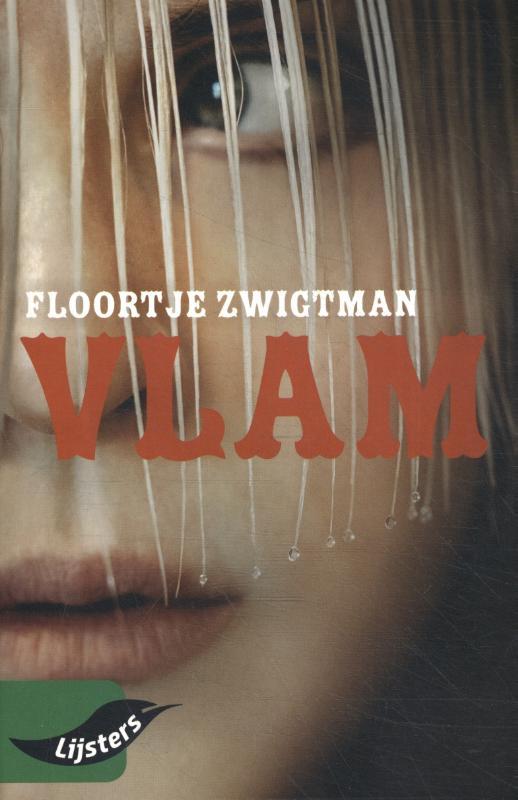 Cover Vlam