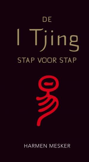 Cover De I Tjing stap voor stap
