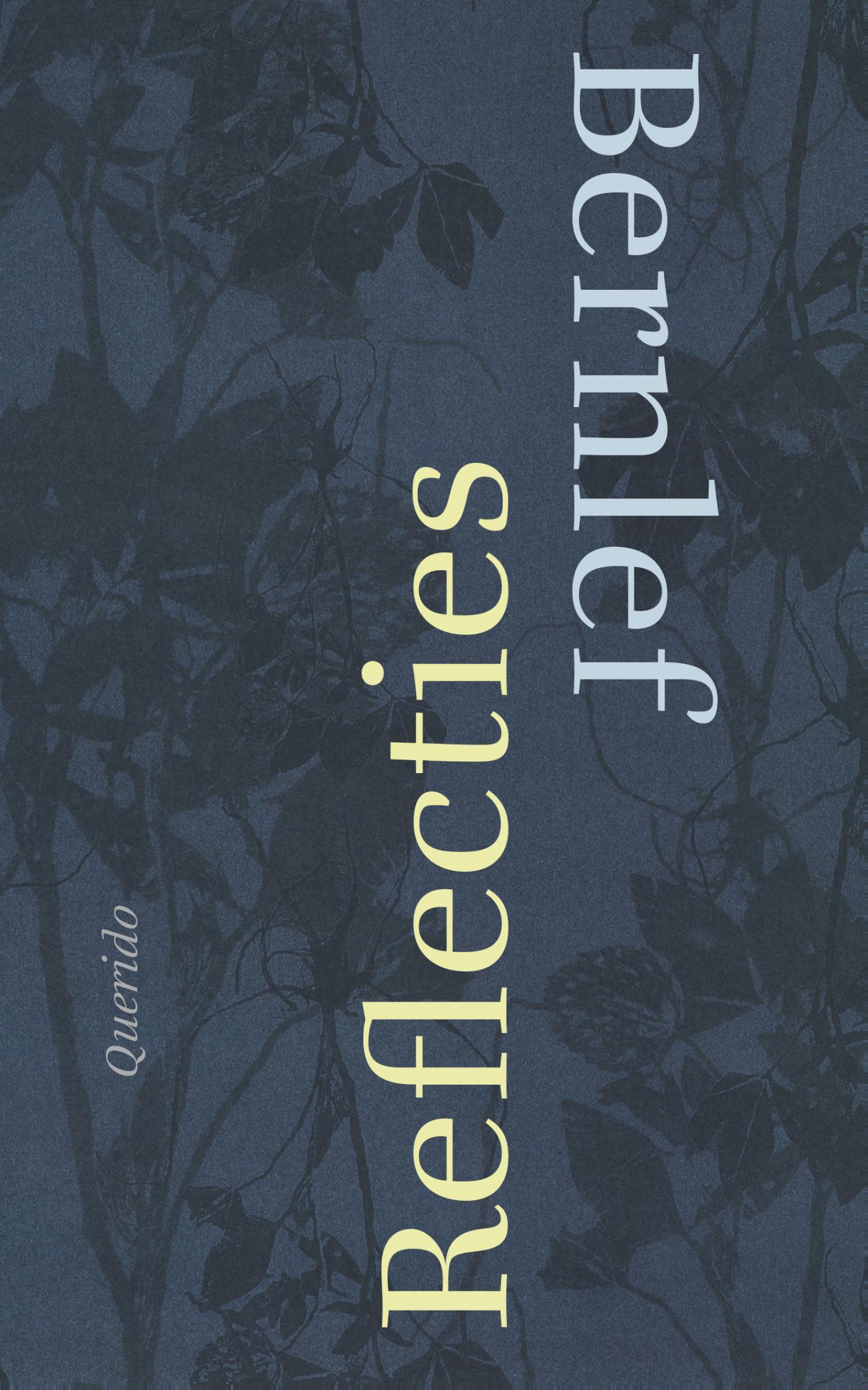 Cover Reflecties