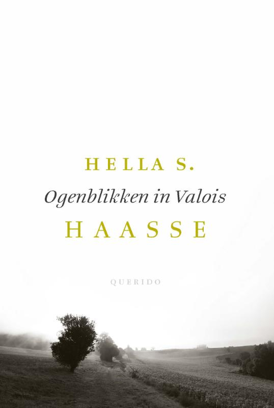 Cover Ogenblikken in Valois