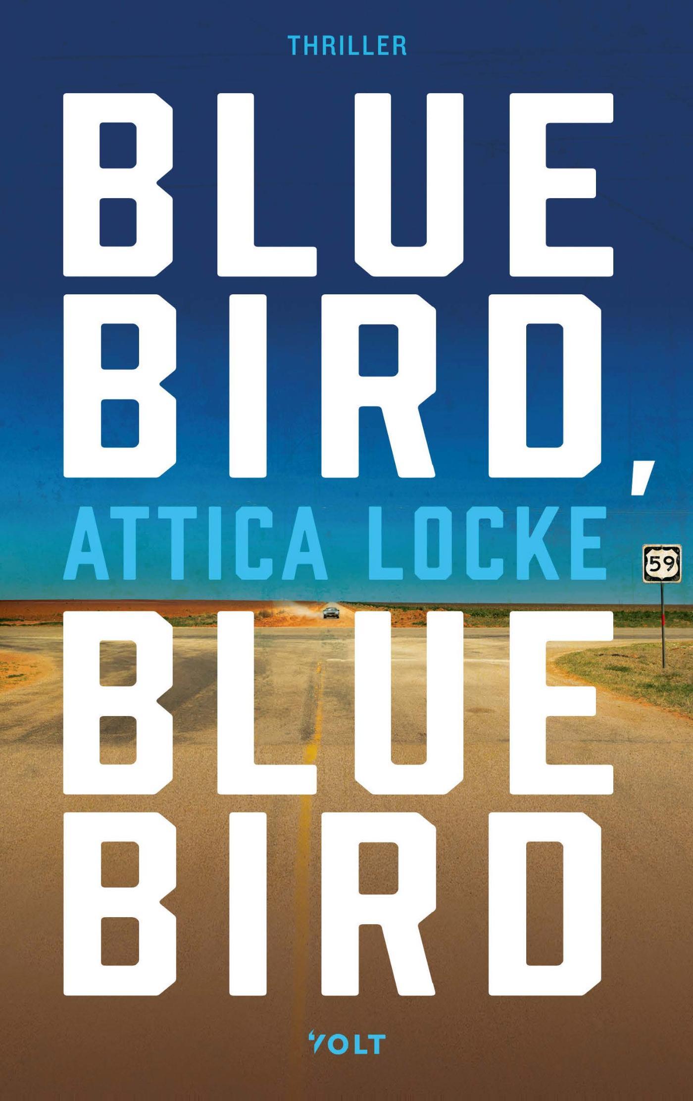 Cover Bluebird, bluebird