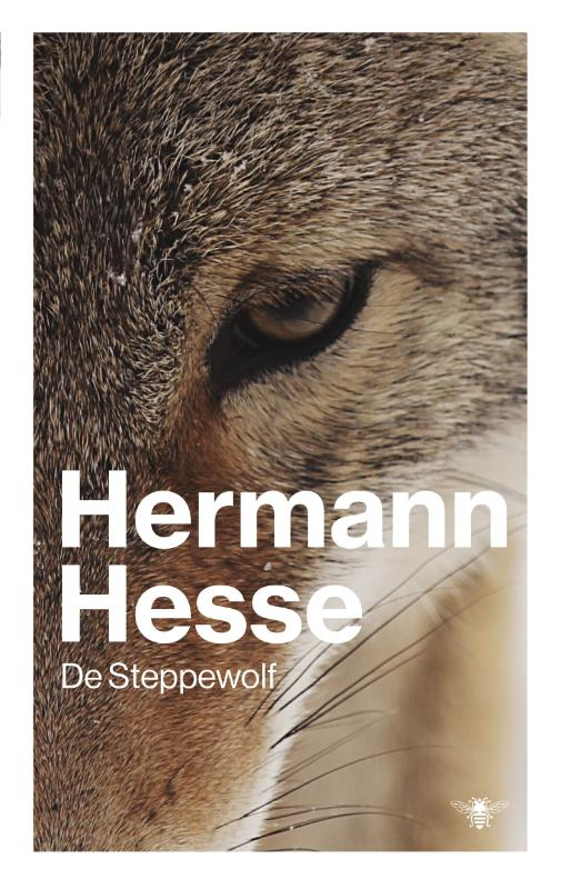 Cover Steppewolf