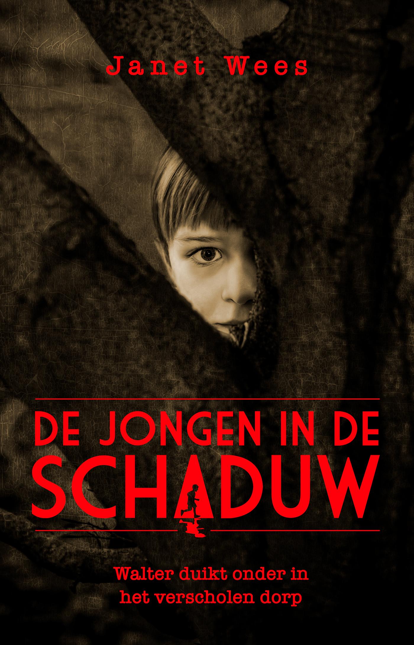 Cover De jongen in de schaduw
