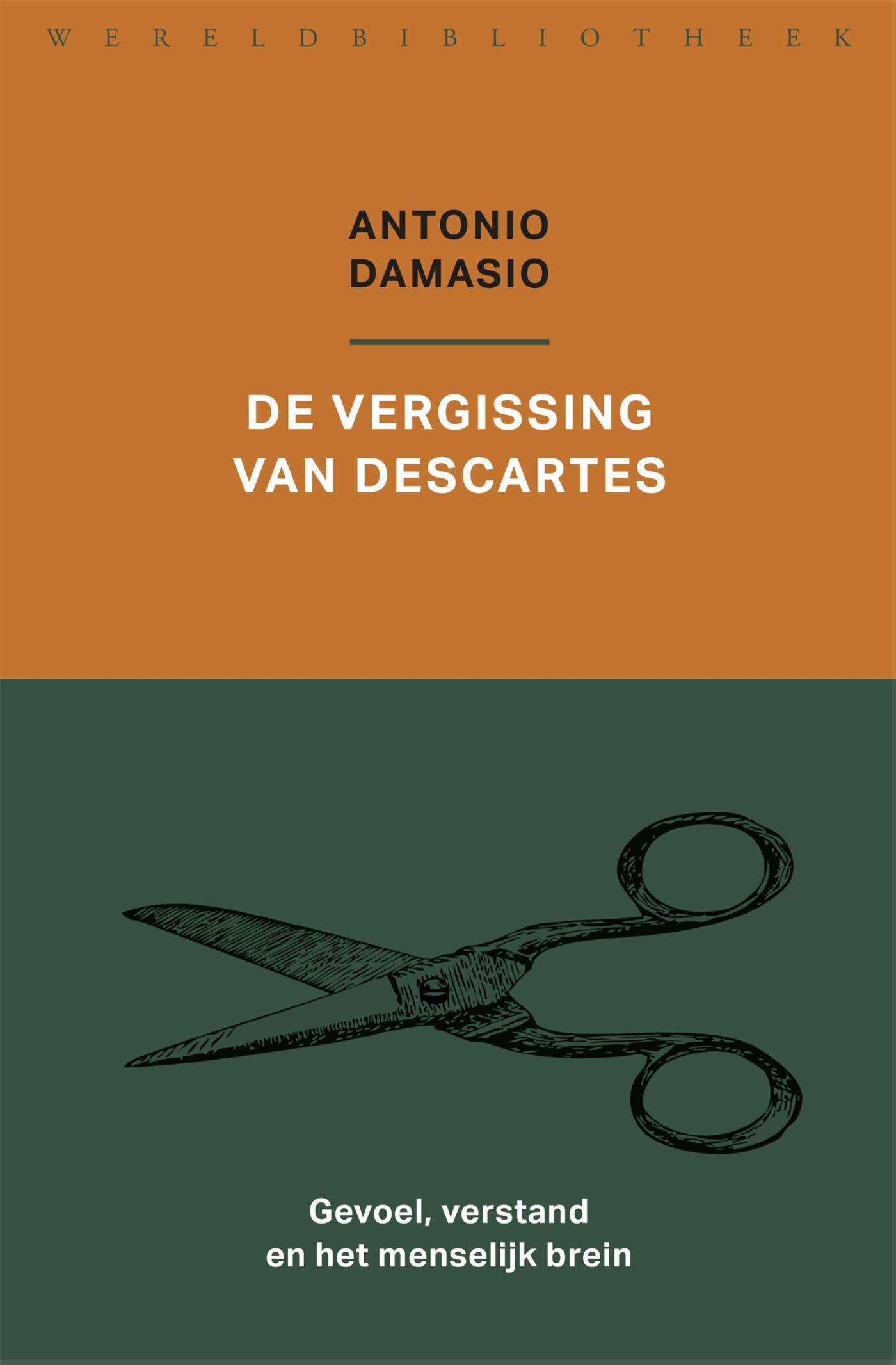 Cover De vergissing van Descartes