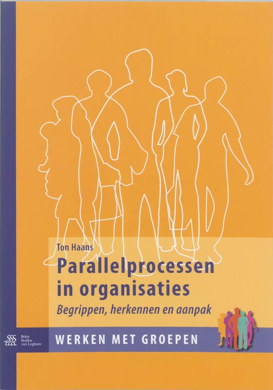 Cover Parallelprocessen in organisaties