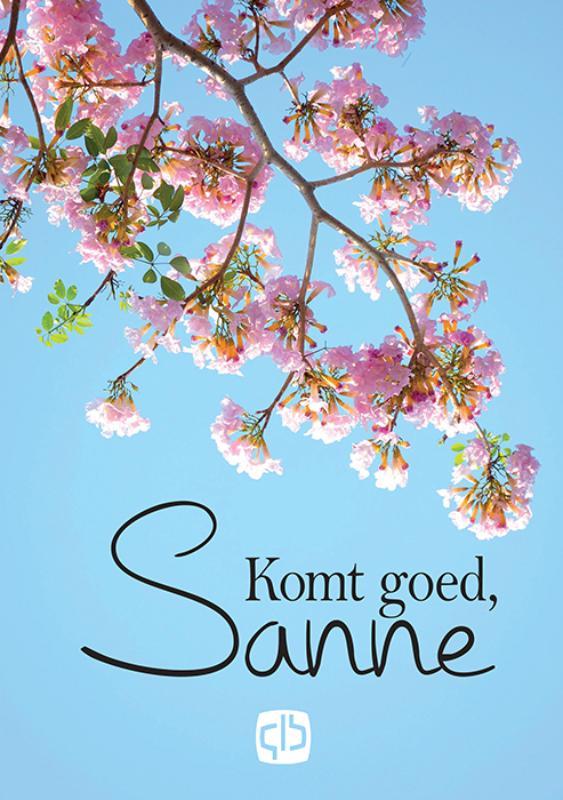 Cover Komt goed, Sanne