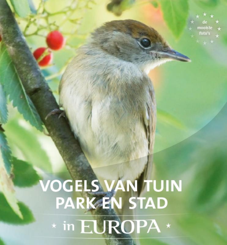 Cover Vogels van tuin, park en stad in Europa