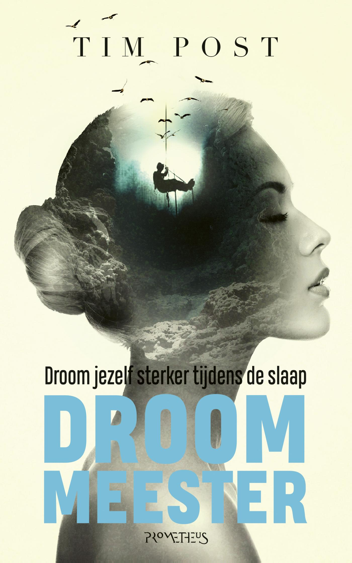 Cover Droom meester