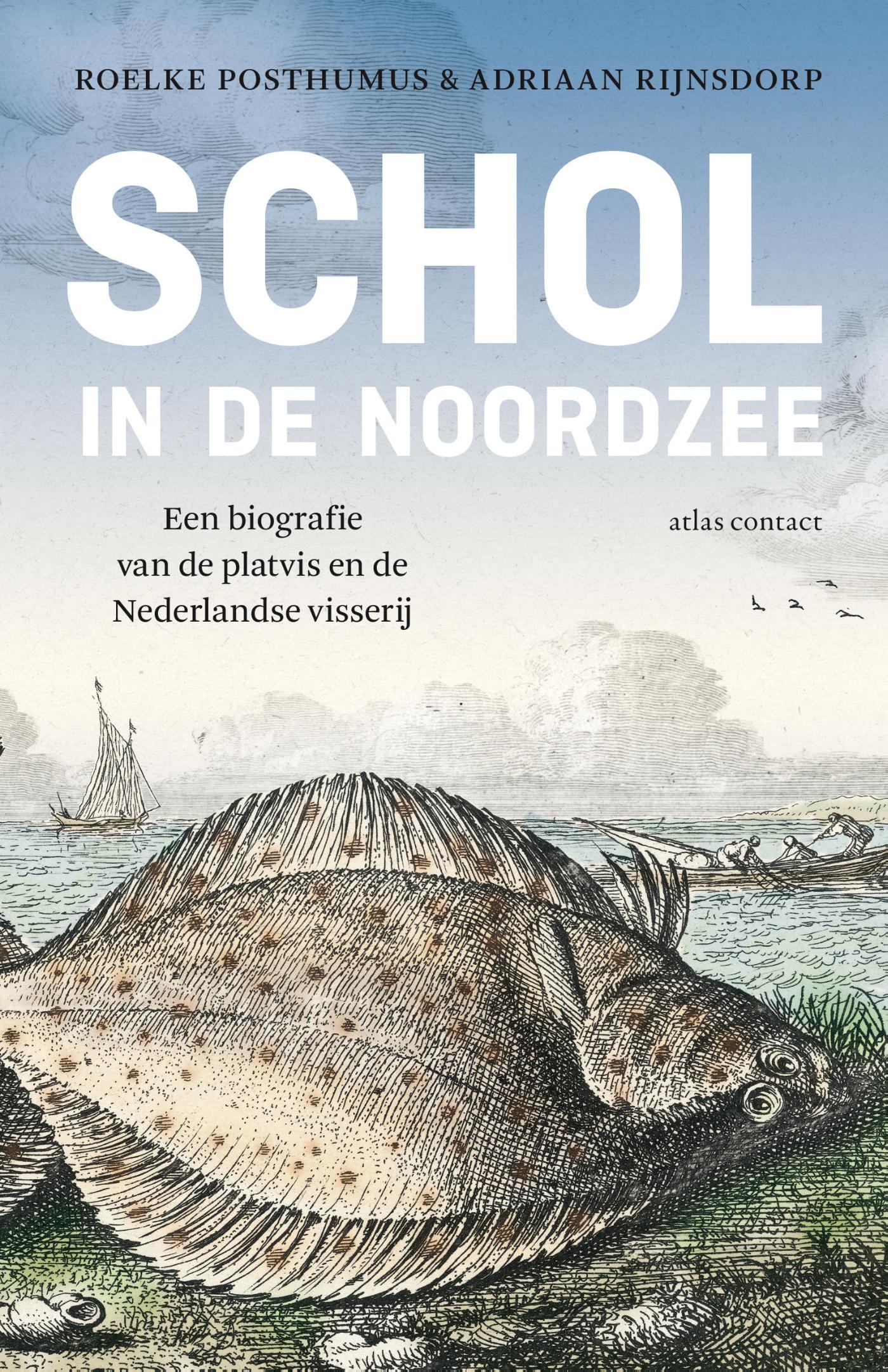 Cover Schol in de Noordzee