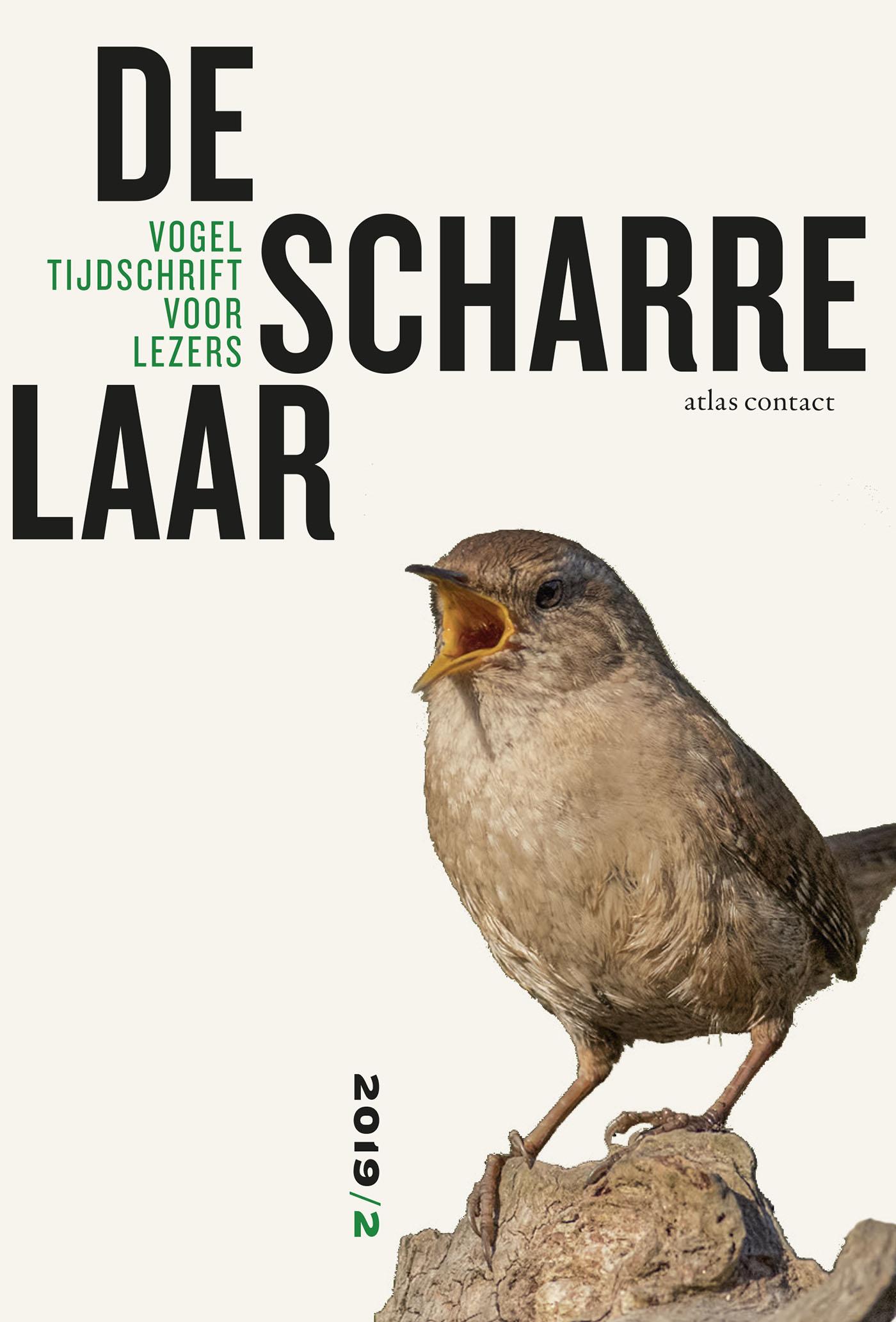 Cover De scharrelaar - 2019/2