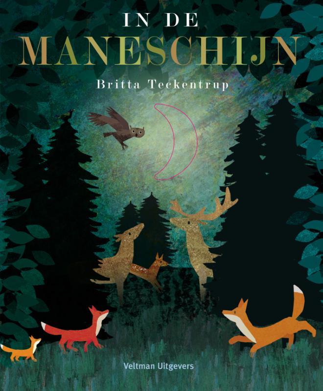 Cover In de maneschijn