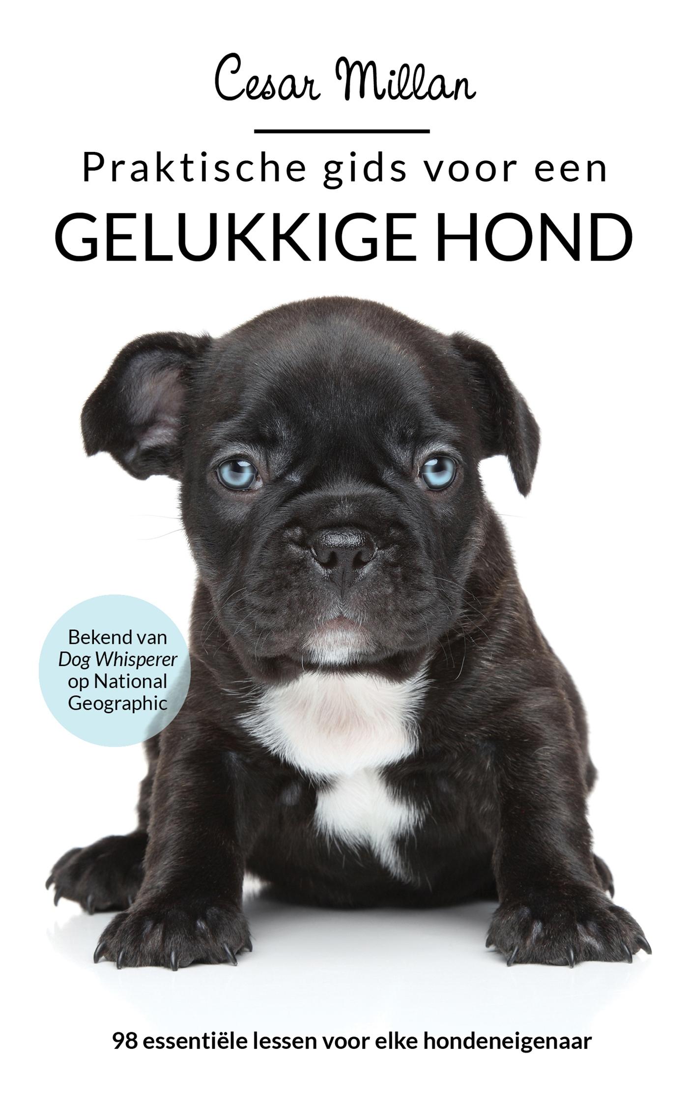 Cover Praktische gids voor een gelukkige hond