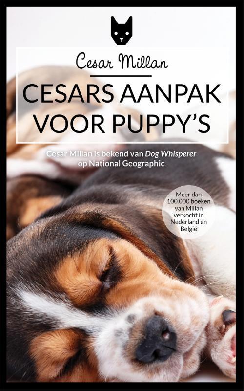 Cover Cesar's aanpak voor puppy's