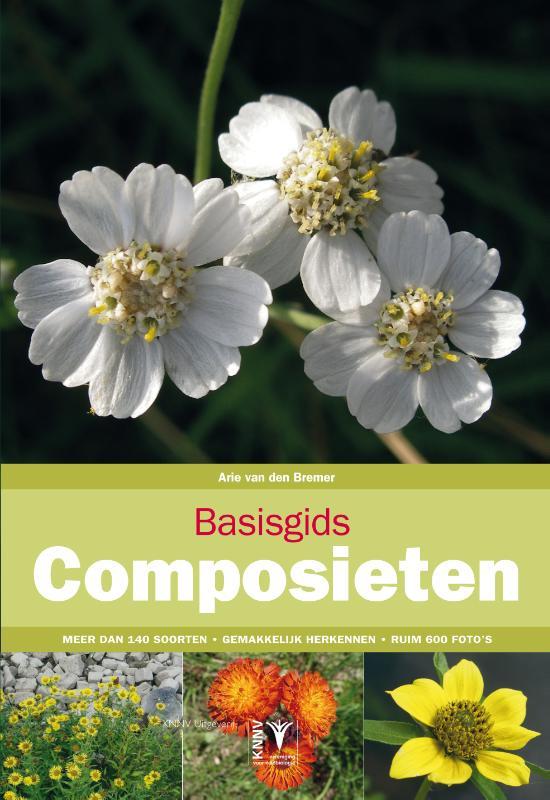 Cover Basisgids composieten