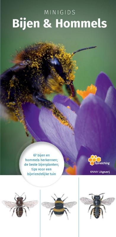 Cover Minigids Bijen en Hommels
