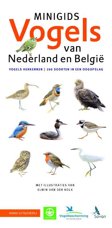 Cover Minigids Vogels van Nederland en België