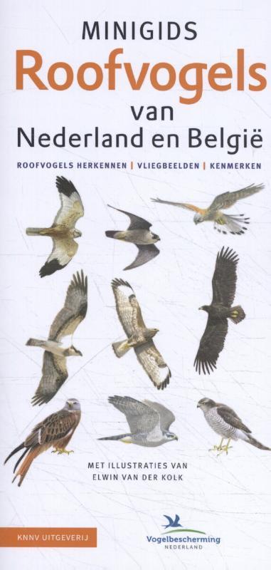 Cover Minigids Roofvogels van Nederland en België