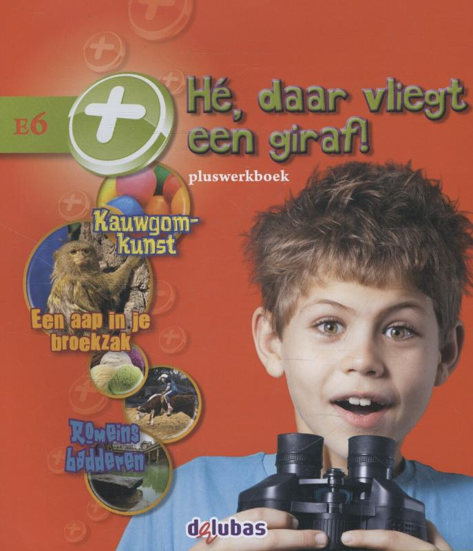 Cover Pluswerkboek E6