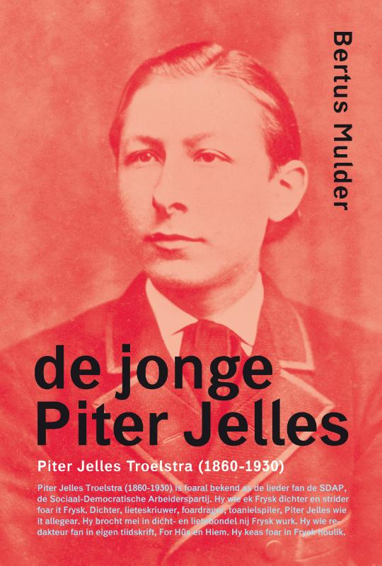 Cover De jonge Piter Jelles