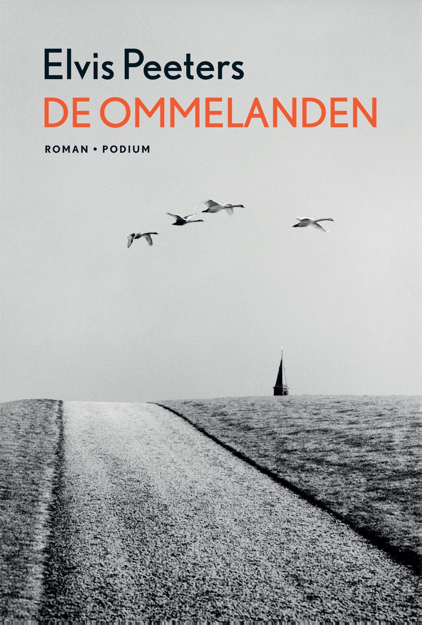 Cover De ommelanden
