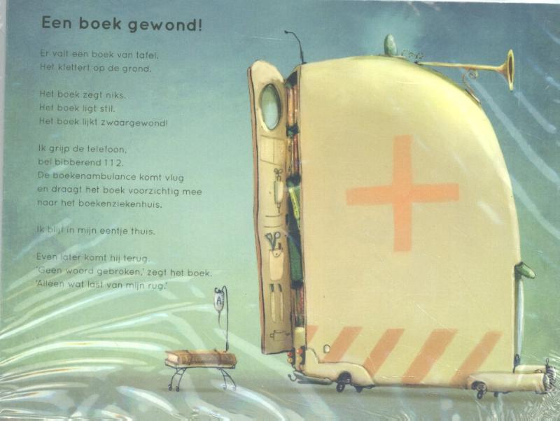 Cover Plint 10 kaarten Een boek gewond Erik van Os