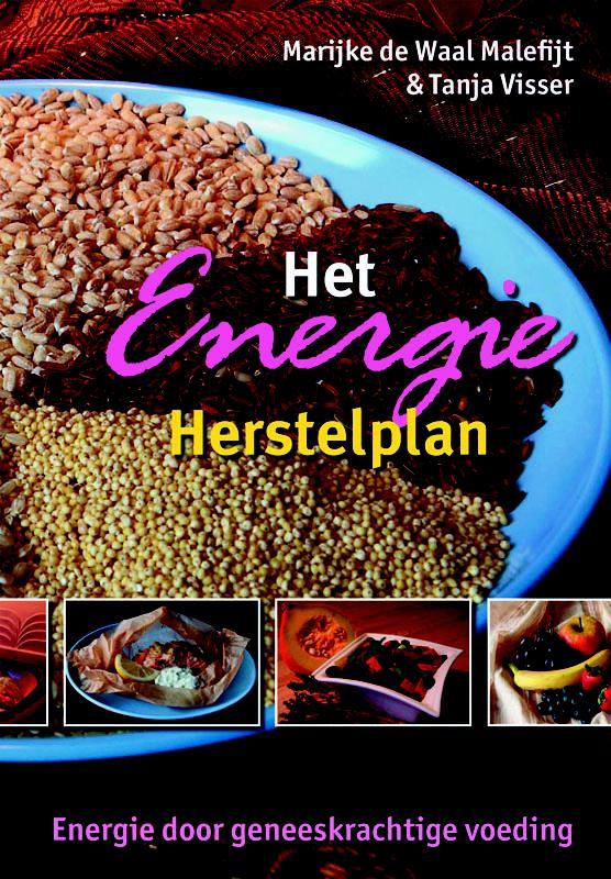 Cover Het Energie Herstelplan