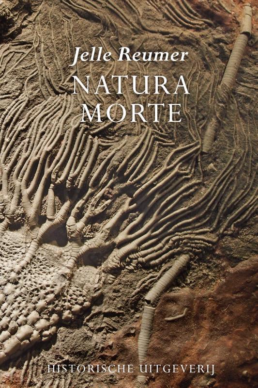 Cover Natura morte