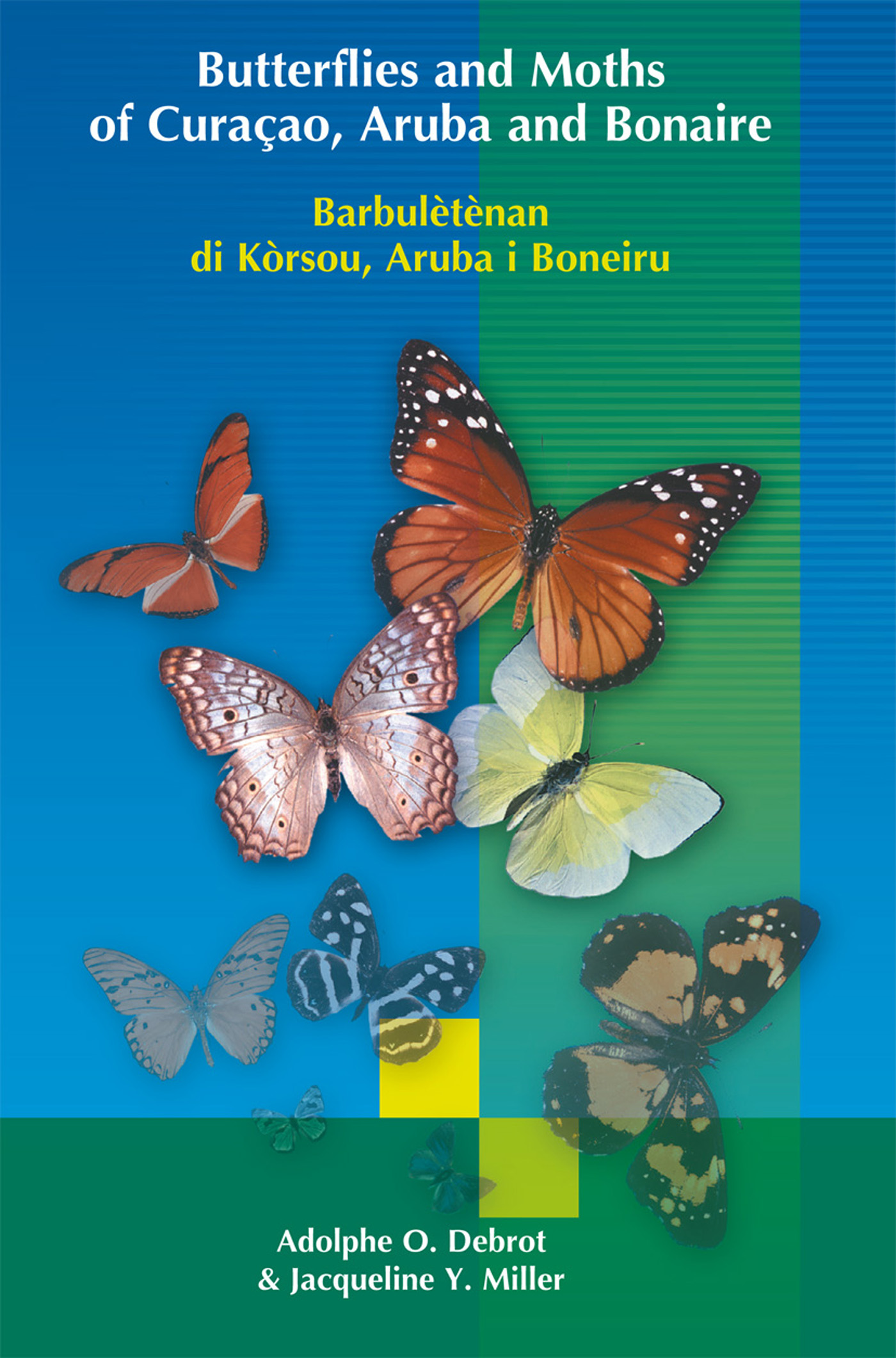 Cover Butterflies and Moths of Curacao, Aruba and Bonaire