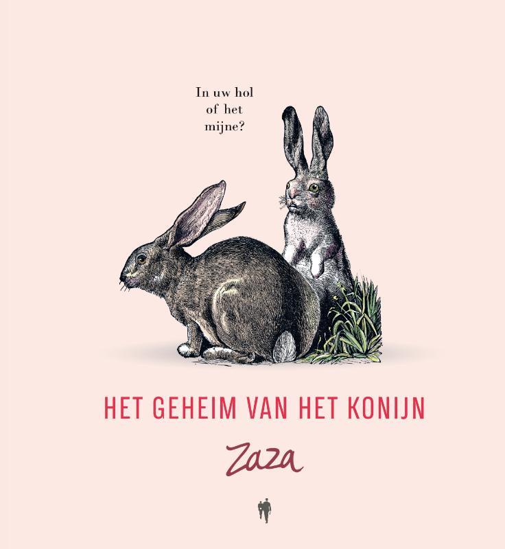 Cover Het geheim van het konijn