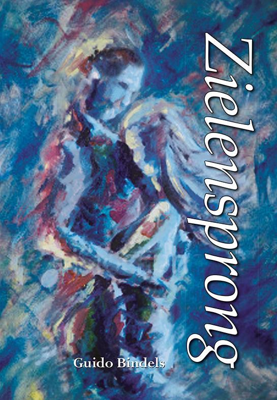 Cover Zielensprong