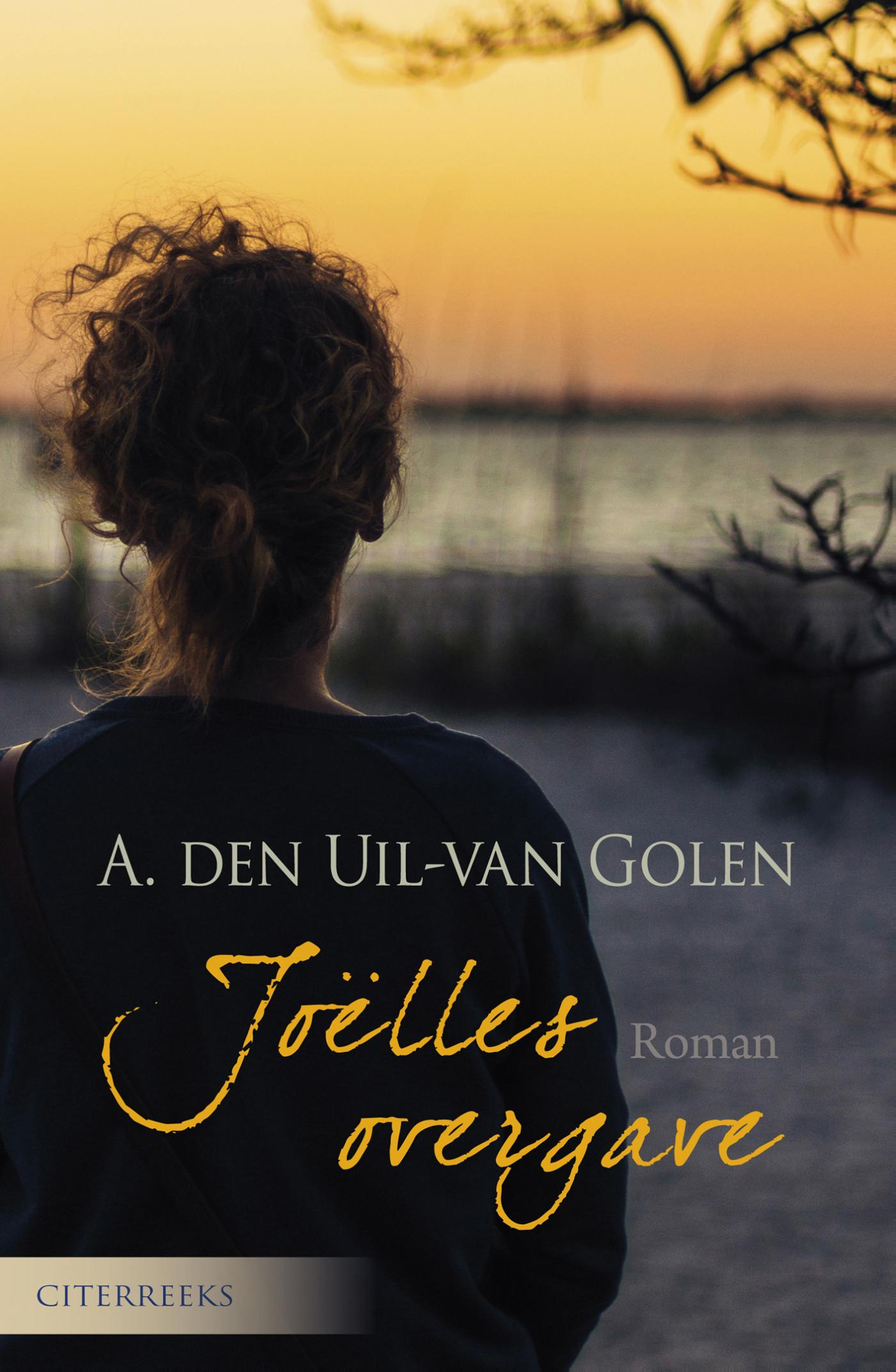 Cover Joëlles overgave