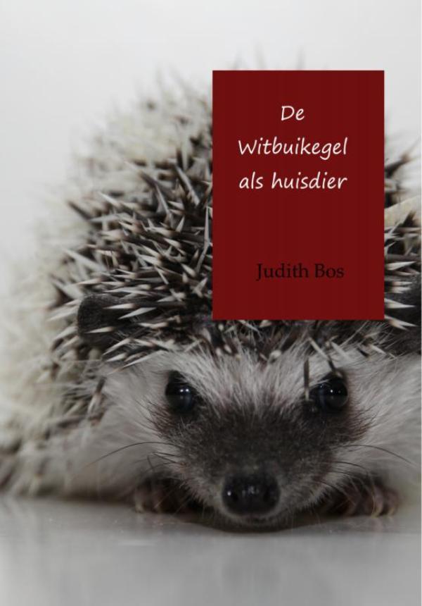 Cover De witbuikegel als huisdier
