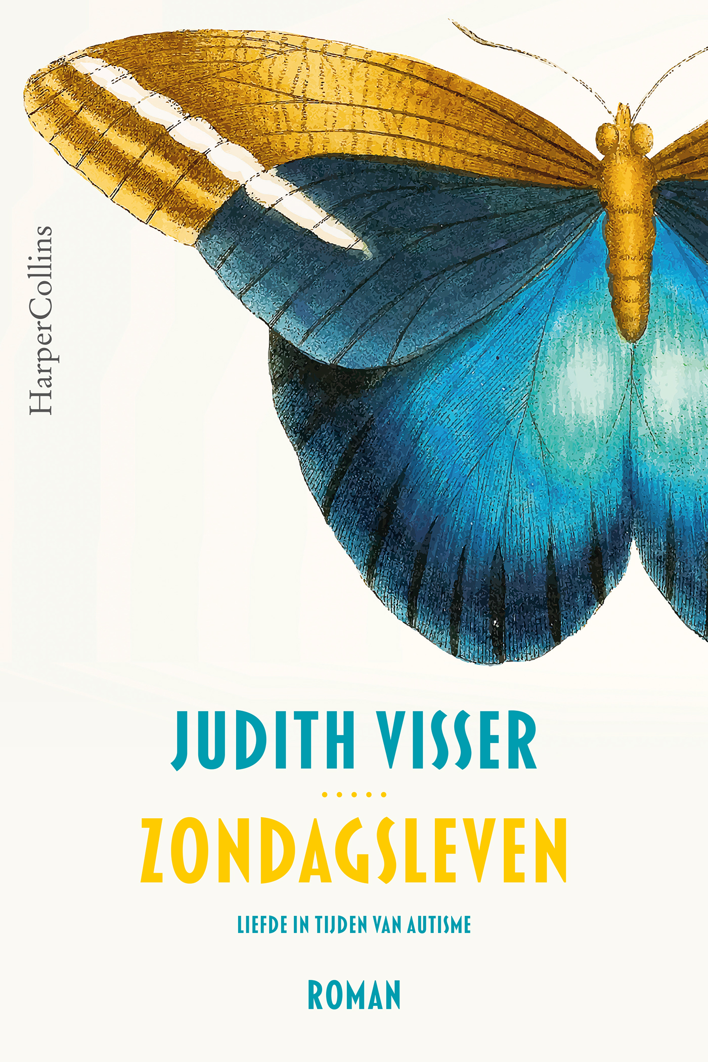 Cover Zondagsleven