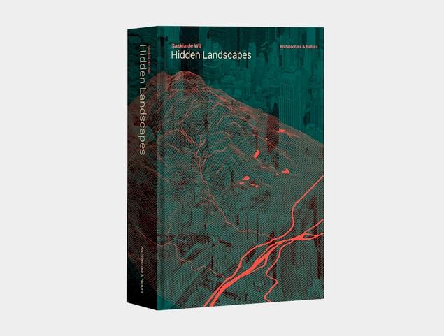 Cover Hidden landscapes