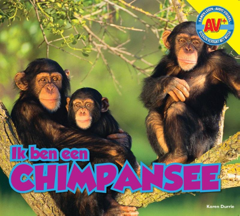 Cover Chimpansee