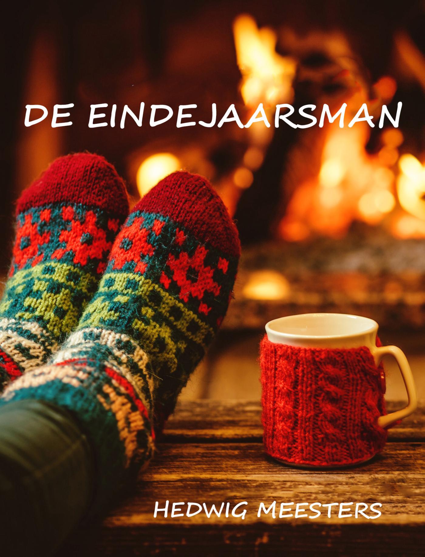 Cover De eindejaarsman