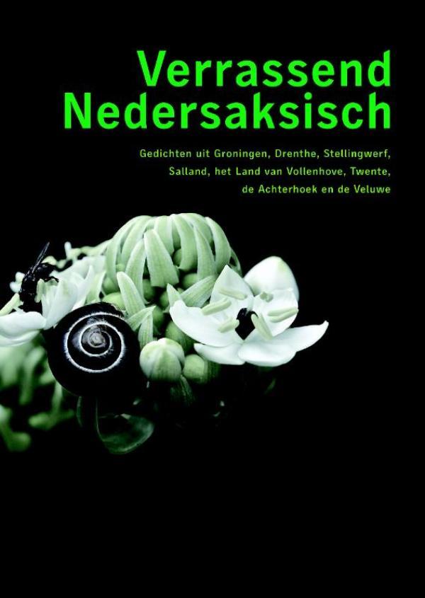 Cover Verrassend Nedersaksisch