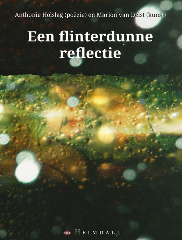Cover Een flinterdunne reflectie
