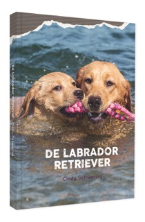 Cover De Labrador Retriever