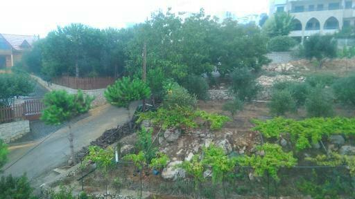 Land, Farms & Estates in Ajaltoun - Land for sale