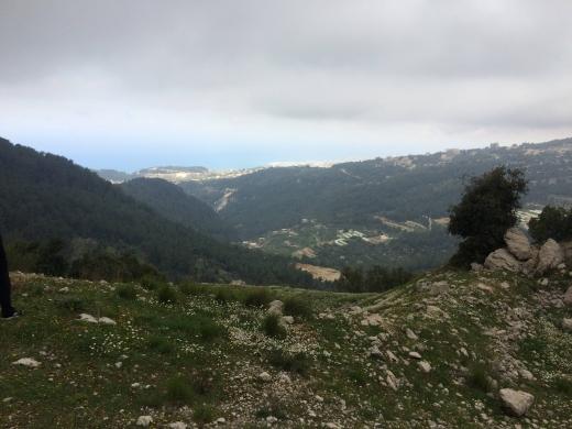 For Sale in Jouret el-Tourmos - للبيع ارض جورة التورمس (كسروان) منظر بحر وجبل لا يحجب ٥،٩٥١ متر زون ٢٥-٥٠ سعر ٤٥٠،٠٠٠$ ت: ٠٣٦٦٦٦٤٦