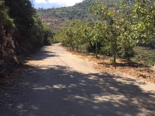 For Sale in Jdeidet Ghazir - 1000m2 land for sale jdeidet ghazir 30/90