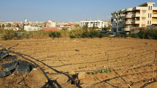 Land, Farms & Estates in Rmeileh - Land for sale