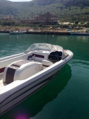 Vans, Trucks & Plant in Mount Lebanon - searay - skiray ( skinotic boat )