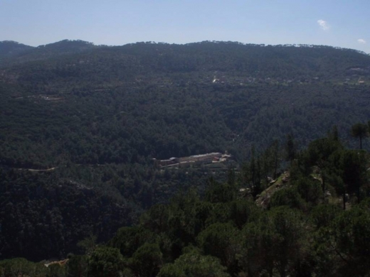 Land in Jouret el-Ballout - برمانا - ألجورة أرض للبيع مساحة 1200 م, مطلة جبل, سهلة ألعمار, ZONE 30/75.