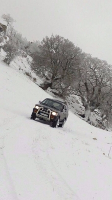 Toyota in Jezzine - 4Runner