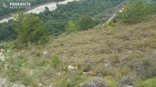 Land in Blat - بلاط – 990 م2 أرض - $406,000| PLS23466