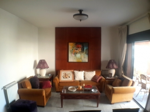 Apartment in Mount Lebanon - Furnished Apartment for sale In Zalka SKY343