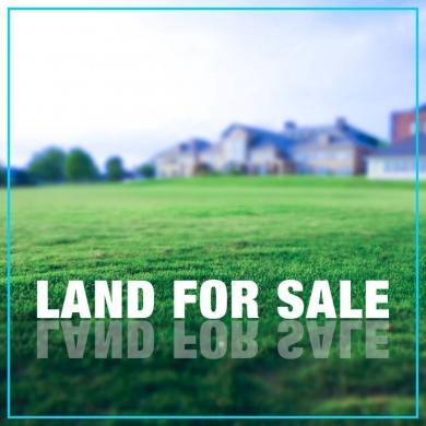 Land in Mayrouba - Land for rent in Mayrouba